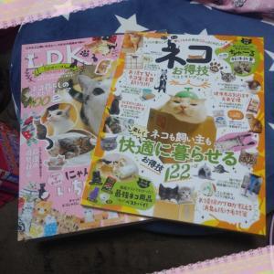 購入した猫雑誌