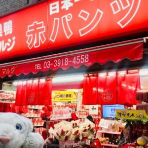 【巣鴨】日本一の赤パンツ屋と隠れたスイーツ天国なの!