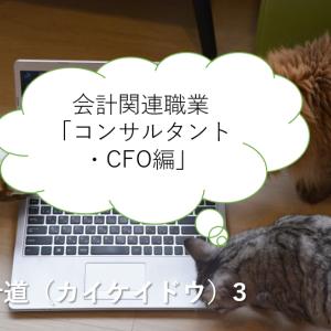 会計関連職業「コンサルタント・CFO編」-会計道(カイケイドウ)-③