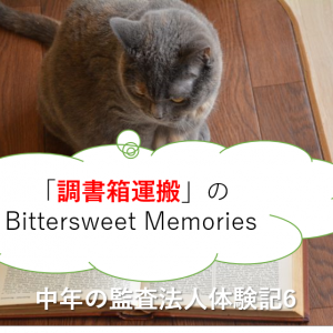 「調書箱運搬」のBittersweet Memories-中年の監査法人体験記6-