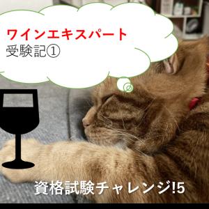 ワインエキスパート受験記①-資格試験チャレンジ-