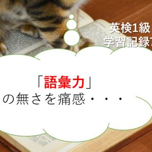 「語彙力」の無さを痛感・・・-英検1級学習記録7-