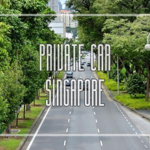 シンガポールで日本人が運転免許を取得する方法と車事情、そして恐怖の運転マナー