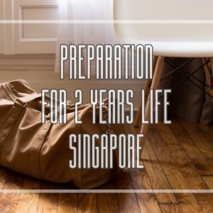 シンガポールへの2年間の海外赴任が決まってからおこなった準備リスト