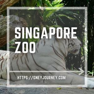 わざわざ旅行先でも行く、世界的に有名なシンガポール動物園