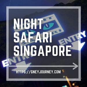 シンガポール ナイトサファリは必見!活発な動物たちに出会える