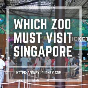 シンガポール動物園vsナイトサファリvsリバーサファリvsバードパークどれに行く?【お得なチケット情報あり】