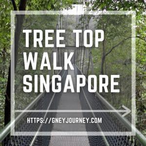 準備をしていこう!シンガポールのツリートップウォークは舐めてはいけない