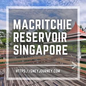 シンガポール マクリッチリザーバーパークで水と森の散歩