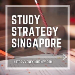 夏休みの自由研究や工作の課題に迷わないアイデア!高水準教育のシンガポールの教育から