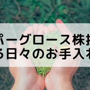 ハイパーグロース株銘柄における日々のお手入れ方法