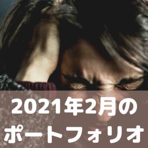 2021年2月のポートフォリオ。個別銘柄のコメント付き。