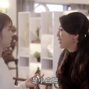 『華麗なるスパイス』から学ぶ中国語と感想(第20話)【小白臉、愛妻便當】
