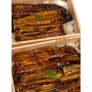 「鰻」は栄養の宝庫~暑い夏を乗り越える~料理歴30年のお得なお話④