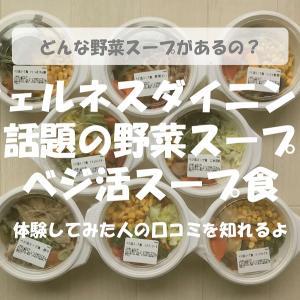 【体験レビュー】ウェルネスダイニングのベジ活スープ食!口コミもチェック!