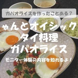 ちゃんとオイシックス体験!タイ料理ガパオライスの3コースディナー!
