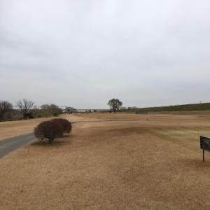 ホームコースでゴルフ