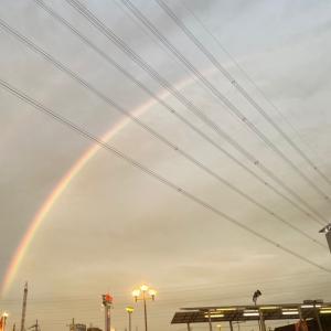 綺麗な虹が