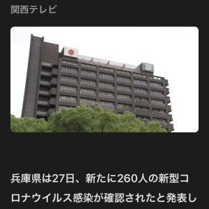 マンボーの危機‼️兵庫県南部‼️