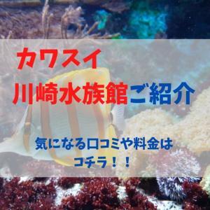 【神奈川】7月17日OPEN カワスイ 川崎水族館の限定イベント情報や口コミを大調査!