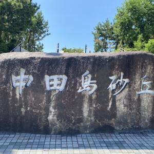 日本三大砂丘の中田島砂丘を徹底解説、デートでおすすめできる?