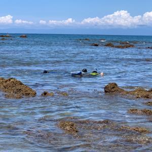 海とテストとバックムーン