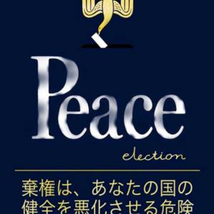 【社会】公民素材としての選挙