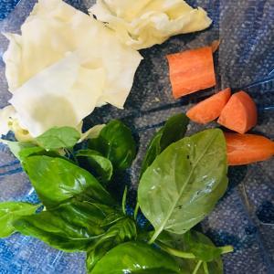 お野菜食べませんか? ( バジル )