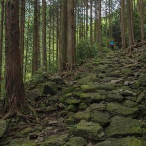 和歌山 紀州口熊野マラソン2020振り返り