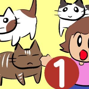 愛しくてたくましいノラ猫たち 1