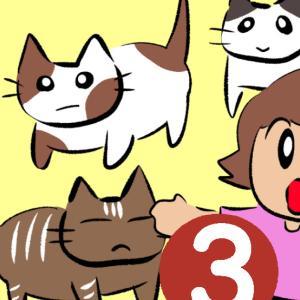 愛しくてたくましいノラ猫たち 3