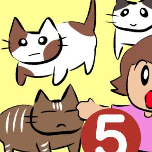 愛しくてたくましいノラ猫たち 5