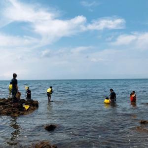 長松海岸で磯遊び