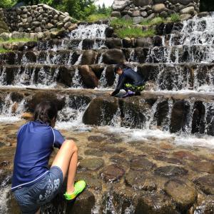 金剛登山口の近くで川遊び