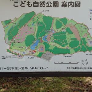 久々の公園