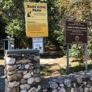 紅葉と海、ヨットパーティーが望めるBear cove park。