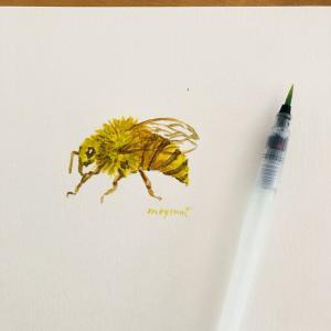 蜂の巣が庭に、、どうするのが正解?