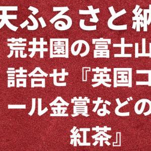 楽天ふるさと納税 荒井園の富士山紅茶詰合せ『英国コンクール金賞などの国産紅茶』
