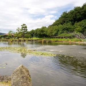 湯梨浜町 あやめ池公園(1) 鳥取県プチ旅 20200811