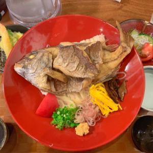 【6日目】松山市内を観光。道後温泉と松山城へ(2020.8.4)