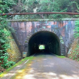 【15日目】阿南から宍喰へ。トンネル11本通過、国道55号線の山道(2020.8.13)