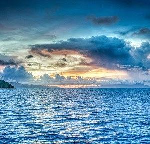海上自衛隊 カレー