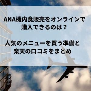 ANA機内食販売をオンラインで購入できるのは?人気のメニューを買う準備と楽天の口コミをまとめ