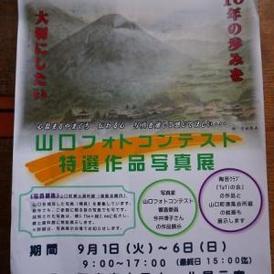 山口フォトコンテスト特選写真展   (山口ホール展示室)