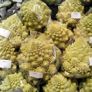 これは何という野菜?