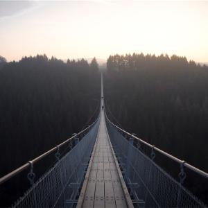 【恋愛】このドキドキは何?脳は勘違いする!「吊り橋効果」とは