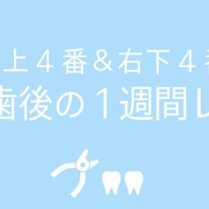 矯正への道のり5:抜歯後1週間でどれだけ治るのか