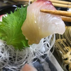 最近のお魚事情と終わらないアレ。
