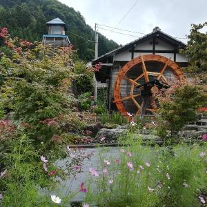 チワワのあみ、美しい六合村を探訪-隠れ湯や廃駅も!