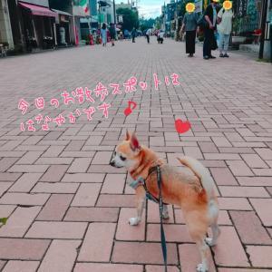 旧軽井沢銀座をそぞろ歩き